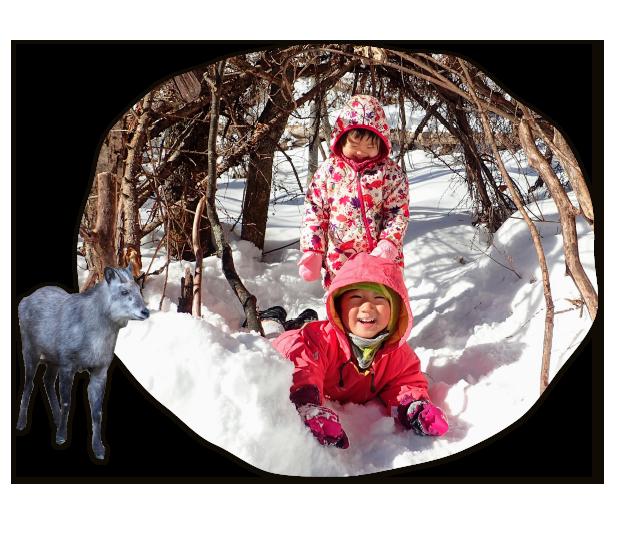 雪の感触を楽しむ